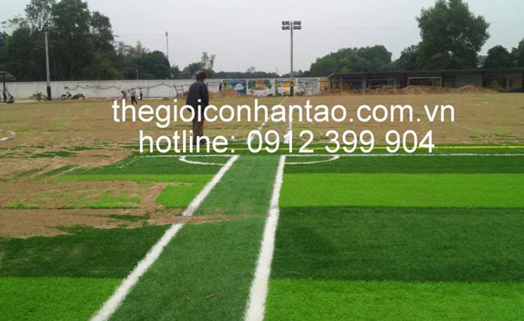 Dưới đây là một số hình cảnh trải cỏ trên bề mặt sân: 2