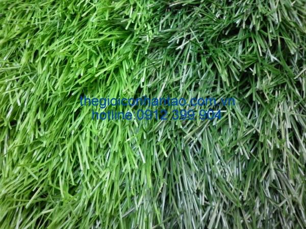 Cách tạo sân cỏ hai màu trong sân bóng đá 2