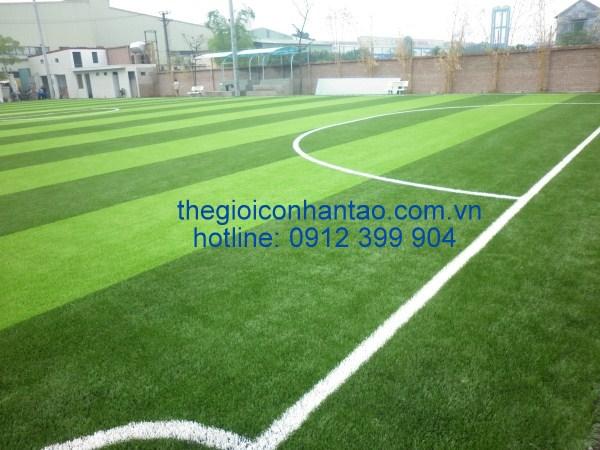 DVN – Đối tác tin cậy cung cấp vật liệu và thi công sân cỏ nhân tạo 1