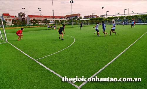 Chia sẻ cách kéo dài tuổi thọ sân bóng đá cỏ nhân tạo 2