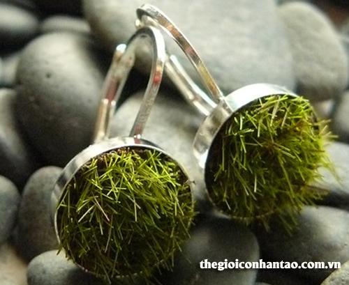 cặp nhẫn cỏ nhân tạo
