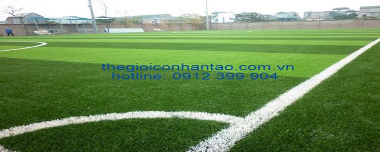 sân bóng đá cỏ nhân tạo