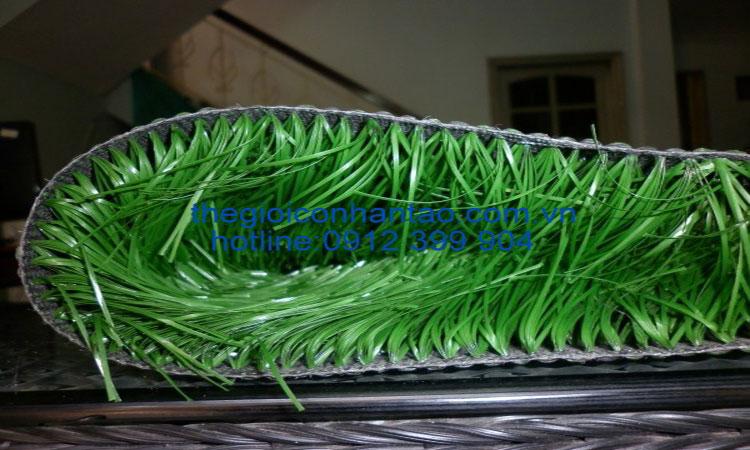 cỏ nhân tạo dvn 12