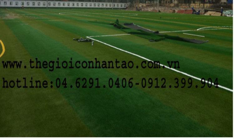 Sân bóng đá cỏ nhân tạo tại Đông Phong - Kỳ Thịnh - Kỳ Anh - Hà Tĩnh 3