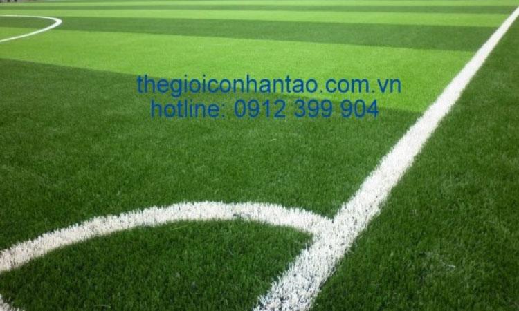 Một số hình ảnh Dự án 2 sân bóng tại Dịch Vọng Hậu - Hà Nội 2