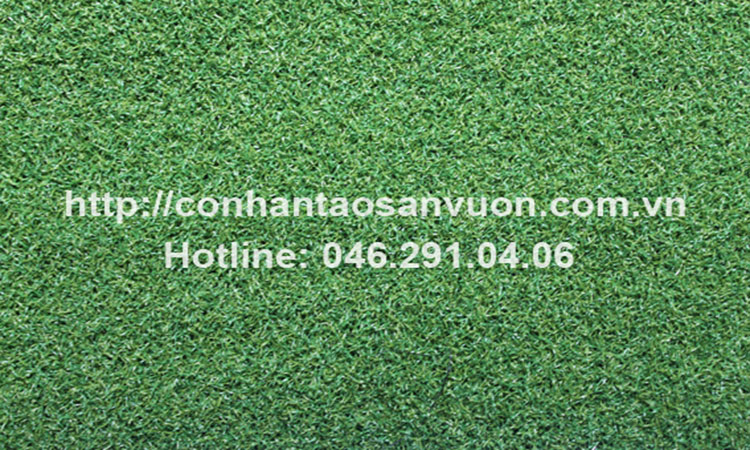 Chi tiết sản phẩm cỏ nhân tạo sân Golf DVN - G2 1