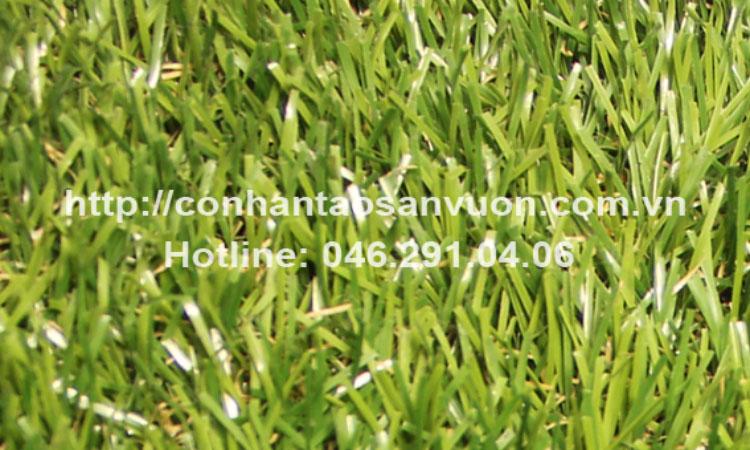 Chi tiết sản phẩm cỏ nhân tạo sân vườn DVN - S24 1