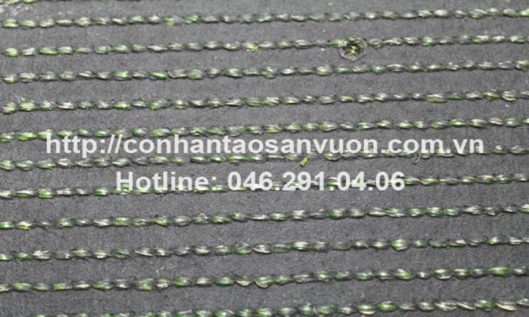 Chi tiết sản phẩm cỏ nhân tạo sân vườn DVN - S24 2