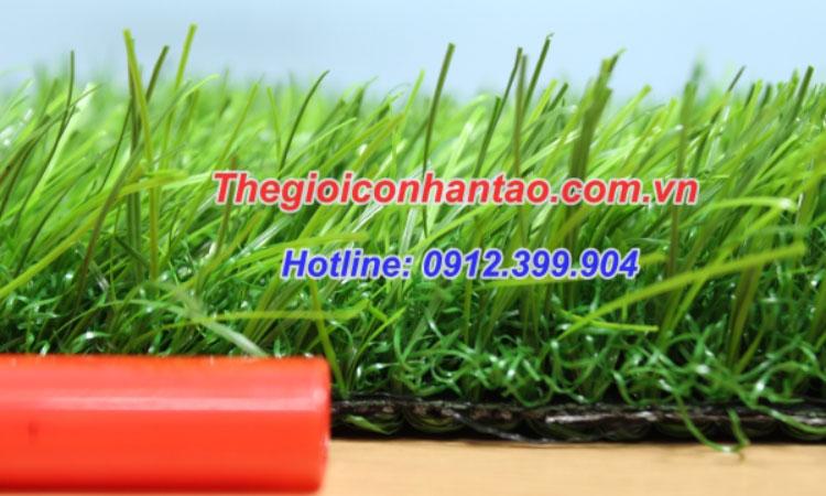 Cỏ nhân tạo sân vườn DVN S41: 1