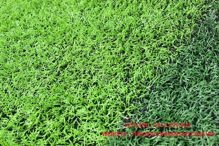 Định nghĩa cỏ nhân tạo 1