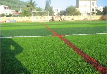 Kinh nghiệm để kinh doanh sân cỏ nhân tạo thành công