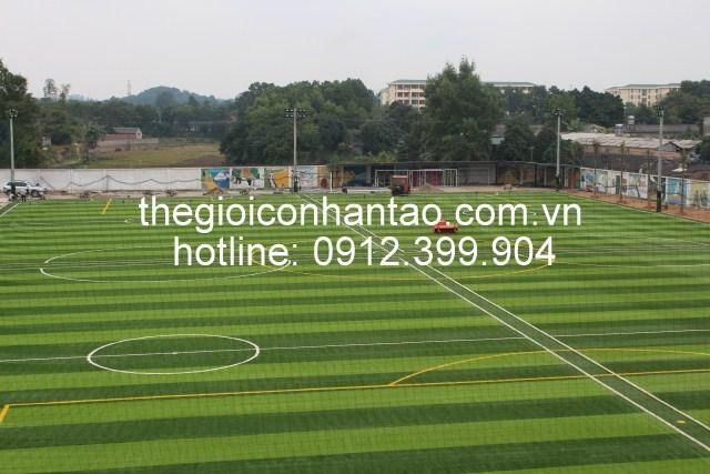 dịch vụ cho thuê sân bóng cỏ nhân tạo