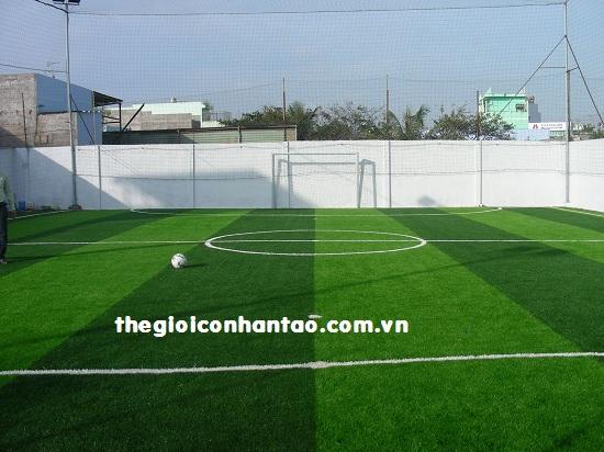 Phải có hàng rào cao hơn 3m đối với các sân bóng đá liền kề đường giao thông 1