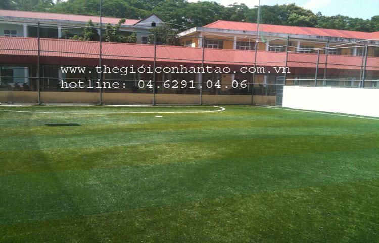 Dự án sân bóng tại Đại học Hàng Hải, TP. Hải Phòng 1