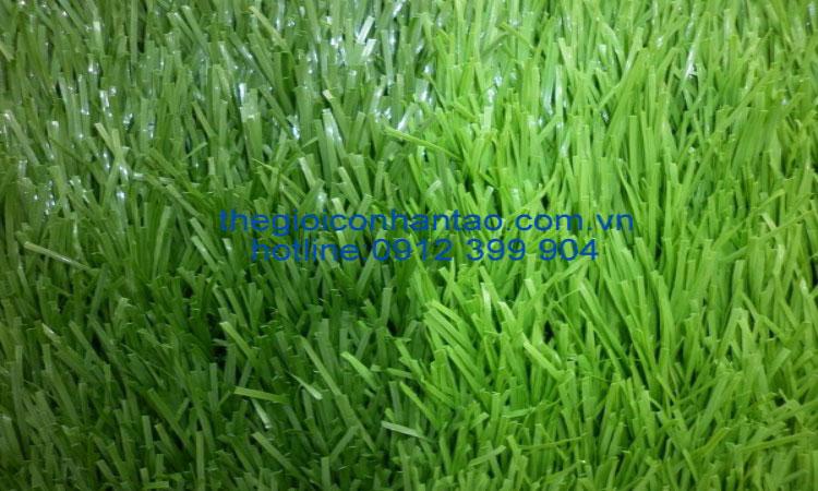 Thi công sân banh cỏ nhân tạo Hòa Khánh - Buôn Mê Thuật - Đắc Lắk 1