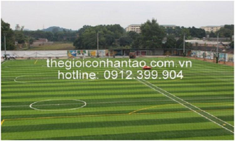 Dự án thi công các sân bóng tại TP Hồ Chí Minh 2