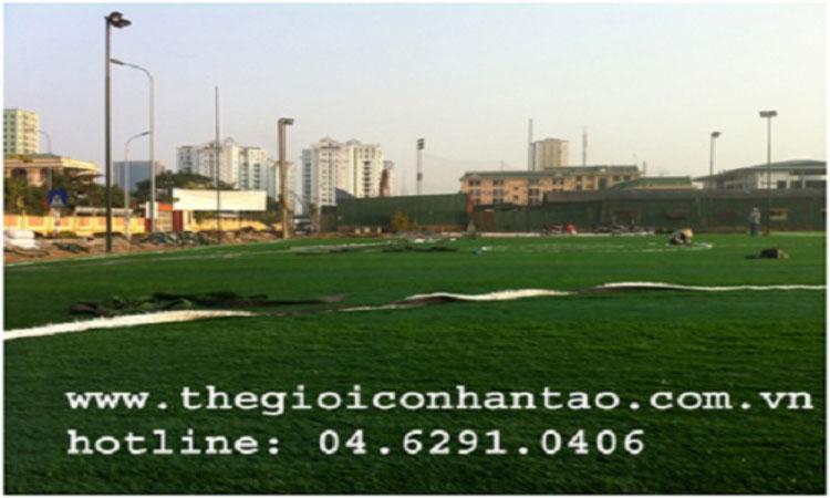 Dự án thi công các sân bóng tại TP Hồ Chí Minh 3