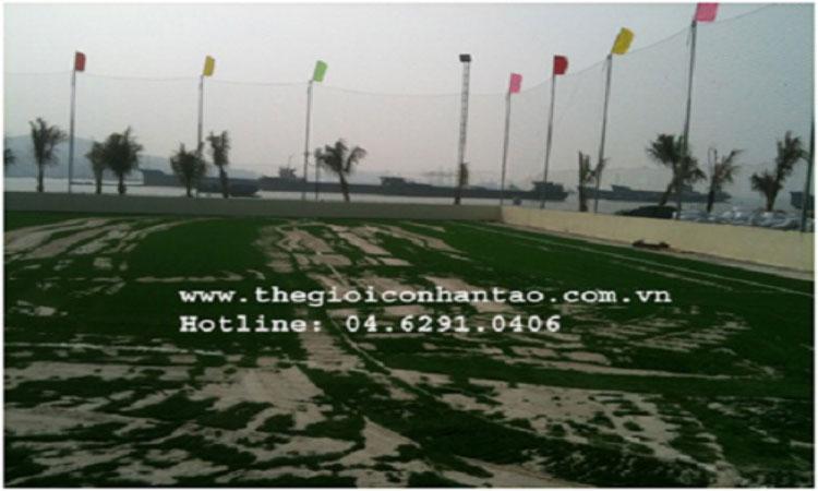 Dự án thi công các sân bóng tại TP Hồ Chí Minh 4