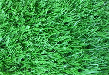 Cung cấp cỏ nhân tạo DVN 15S