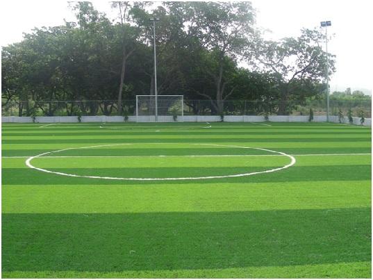 Cùng điểm lại sân cỏ nhân tạo chi nhánh Tp.HCM đã thi công hoàn thiện: 4