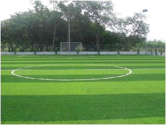 Diện tích sân bóng đá cỏ nhân tạo ở Việt Nam 2
