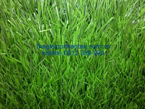 1. Giá của một số dòng sản phẩm cỏ nhân tạo sân bóng đá phổ biến 1