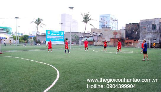 DVN Việt Nam tổ chức giải bóng đá 7 người trên sân cỏ nhân tạo. 3