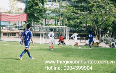 DVN Việt Nam tổ chức giải bóng đá 7 người trên sân cỏ nhân tạo. 4
