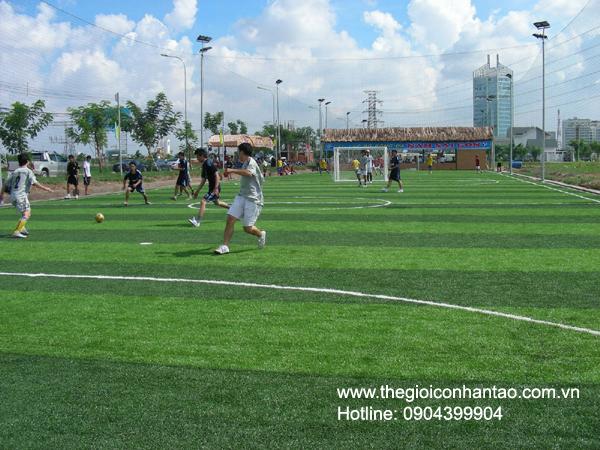 DVN Việt Nam tổ chức giải bóng đá 7 người trên sân cỏ nhân tạo. 7