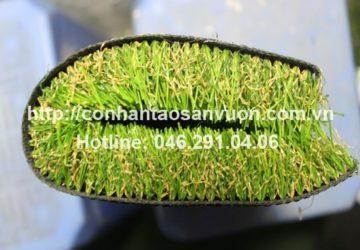 Kinh nghiệm chọn cỏ cho sân