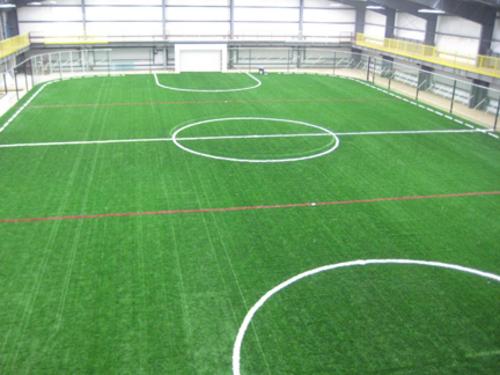 Kích thước sân bóng đá và luật thi đấu bóng đá 7 người 2