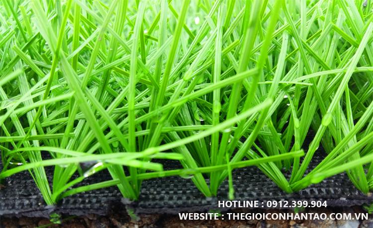 Thi công sân bóng đá cỏ nhân tạo Liễu Đề - Nam Định 1