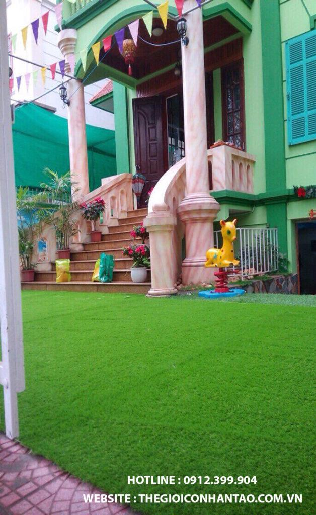 Cỏ trang trí sân vườn trong nhà