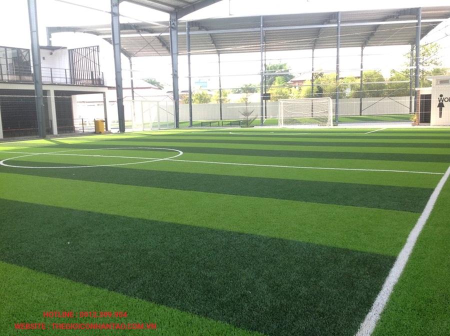 Một số hình ảnh của sân bóng đá cỏ nhân tạo WINNING SEVEN, Lào 2