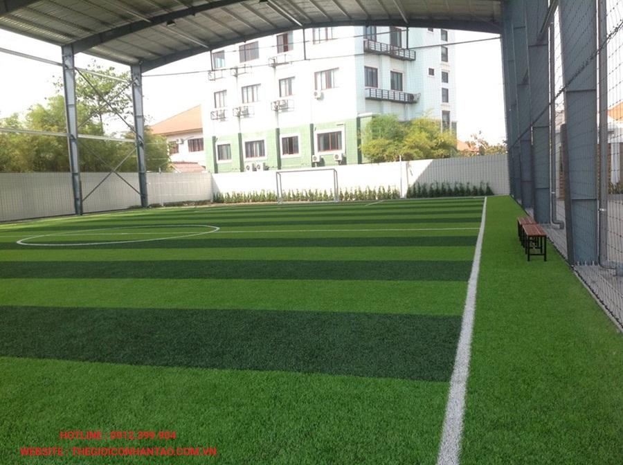 Một số hình ảnh của sân bóng đá cỏ nhân tạo WINNING SEVEN, Lào 3