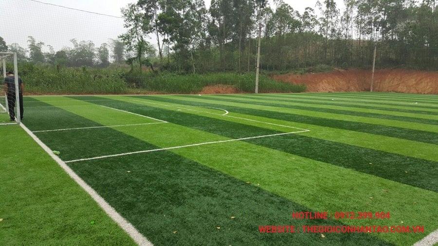 Một số hình ảnh dự án sân cỏ tại Ngã Ba Tuần Châu - Nghệ An 3
