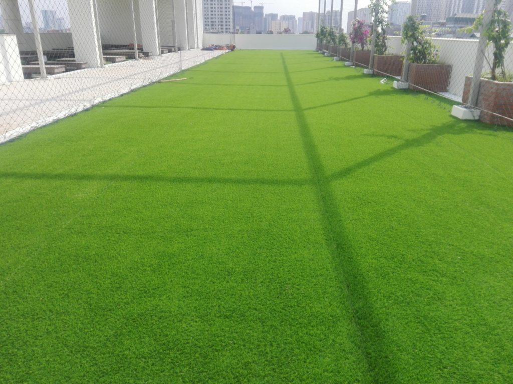 Một số hình ảnh của Dự án sân vườn Trường THCS chất lượng cao Quận Thanh Xuân, Hà Nội 2