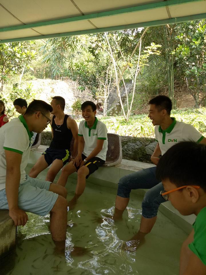 Một số hình ảnh Teambuiding DVN chi nhánh Đà Nẵng Qúy I - 2017 4