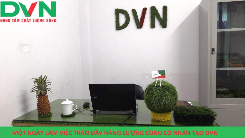Bài dự thi Phòng Kinh doanh sân bóng - Chi nhánh Hồ Chí Minh, Công ty TNHH DVN Việt Nam 2
