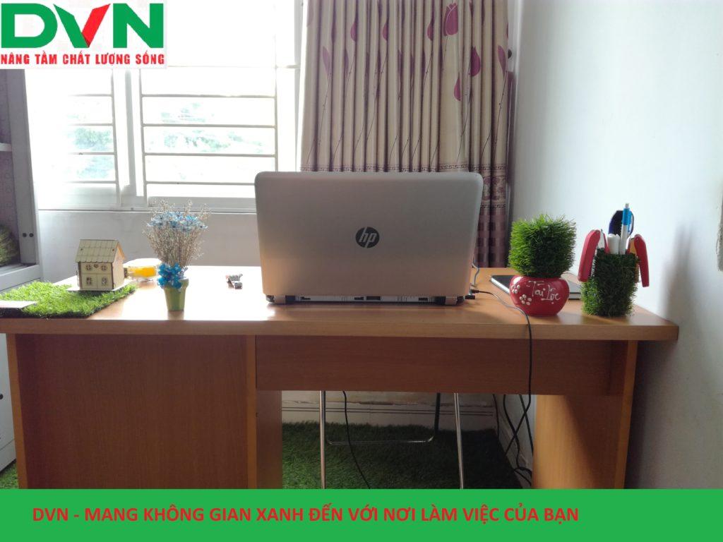 Bài dự thi phòng Kinh doanh sân vườn - Chi nhánh Hồ Chí Minh, Công ty TNHH DVN Việt Nam 2