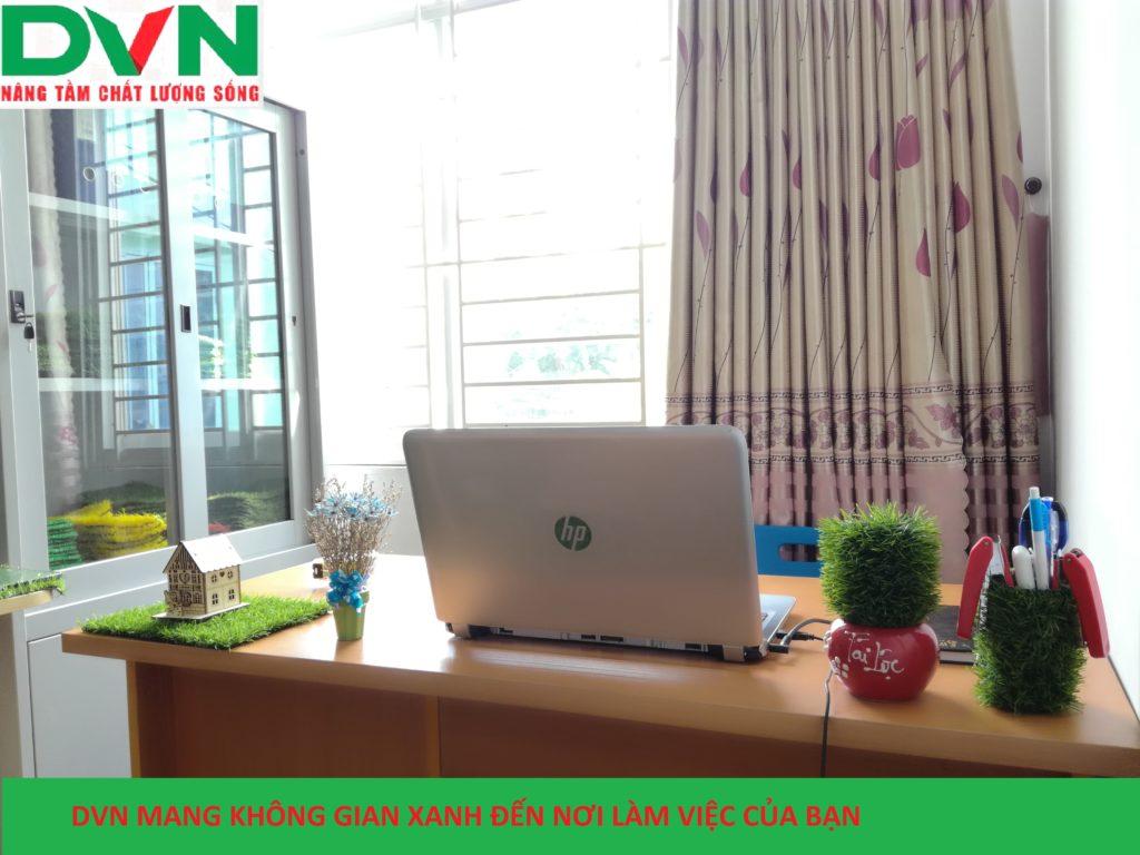 Bài dự thi phòng Kinh doanh sân vườn - Chi nhánh Hồ Chí Minh, Công ty TNHH DVN Việt Nam 1