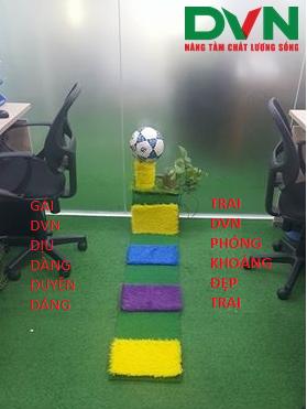 Bài dự thi phòng Kinh doanh sân bóng - Chi nhánh Hà Nội, Công ty TNHH DVN Việt Nam 1