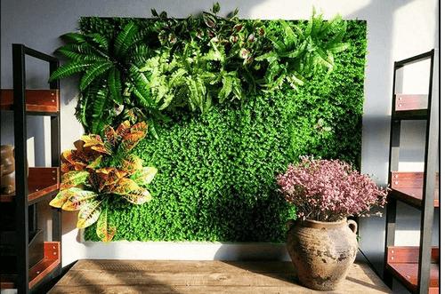 cỏ điểm trang trí