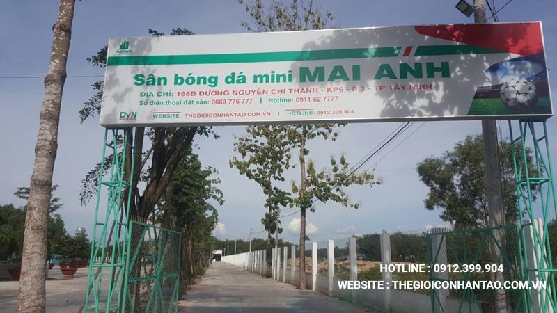 Một số hình ảnh của Dự án sân bóng tại Mai Anh - Tây Ninh 1