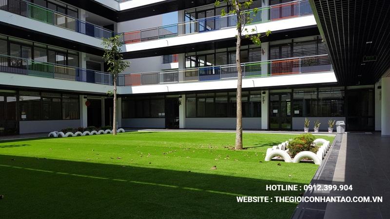 Một số hình ảnh của Dự án Sân vườn trường FTF - Vĩnh Phúc 1