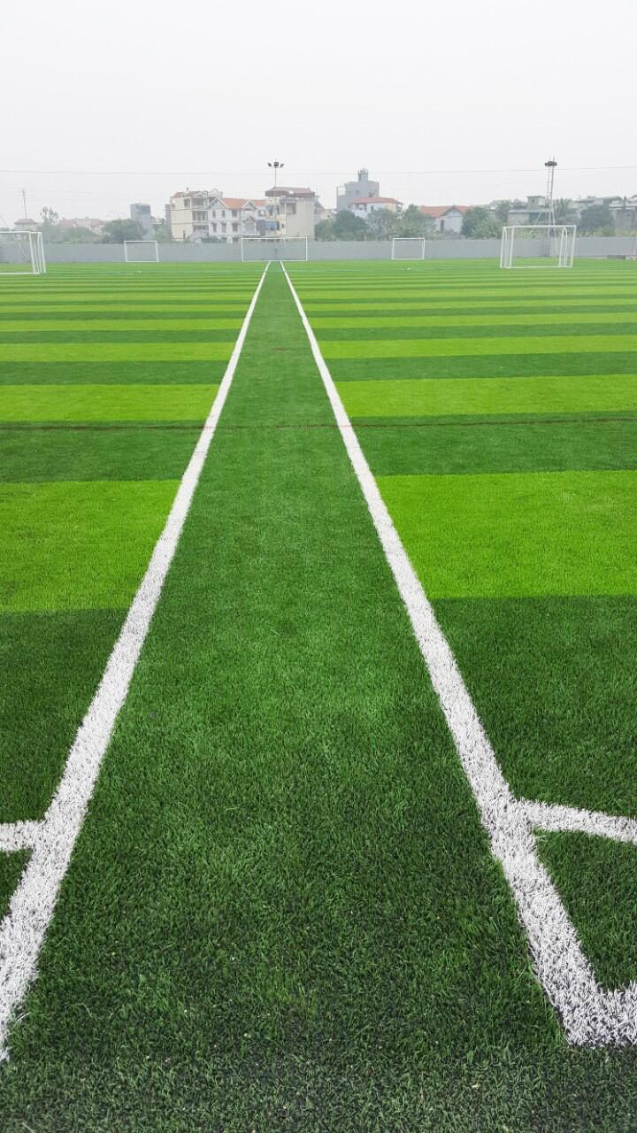 Một số hình ảnh của Dự án sân bóng tại Thạch Bàn, Gia Lâm, Hà Nội 5