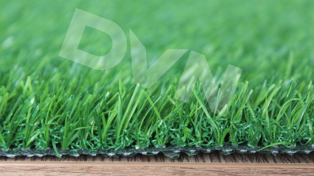 Cỏ sân vườn DVN S20S18-20416-XN