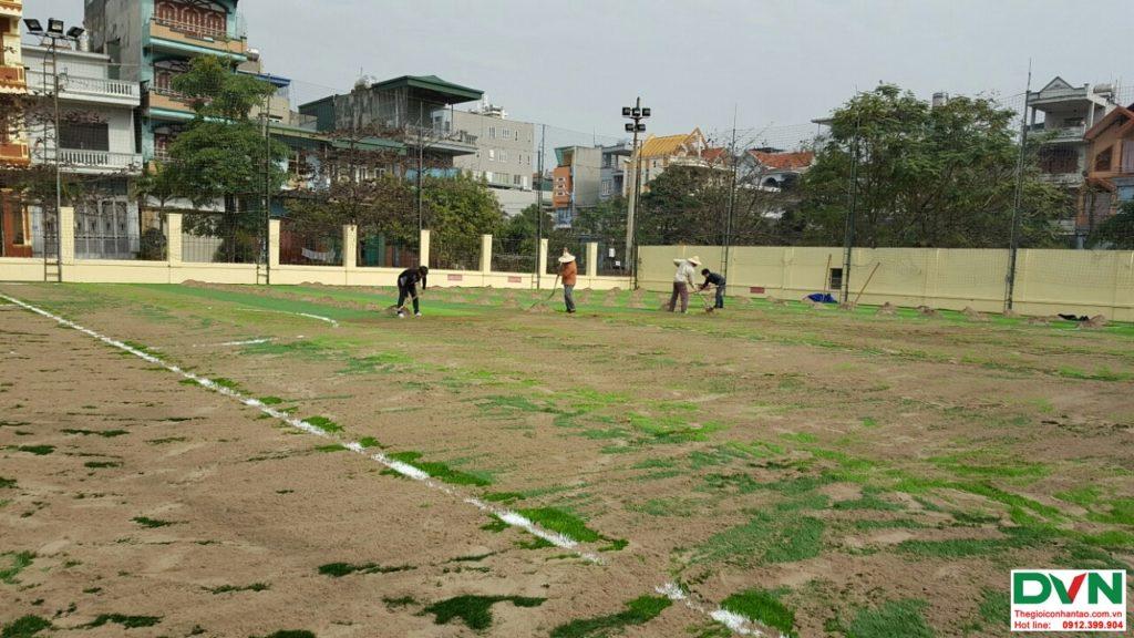 Dự án sân bóng Hạ Long - Quảng Ninh 4