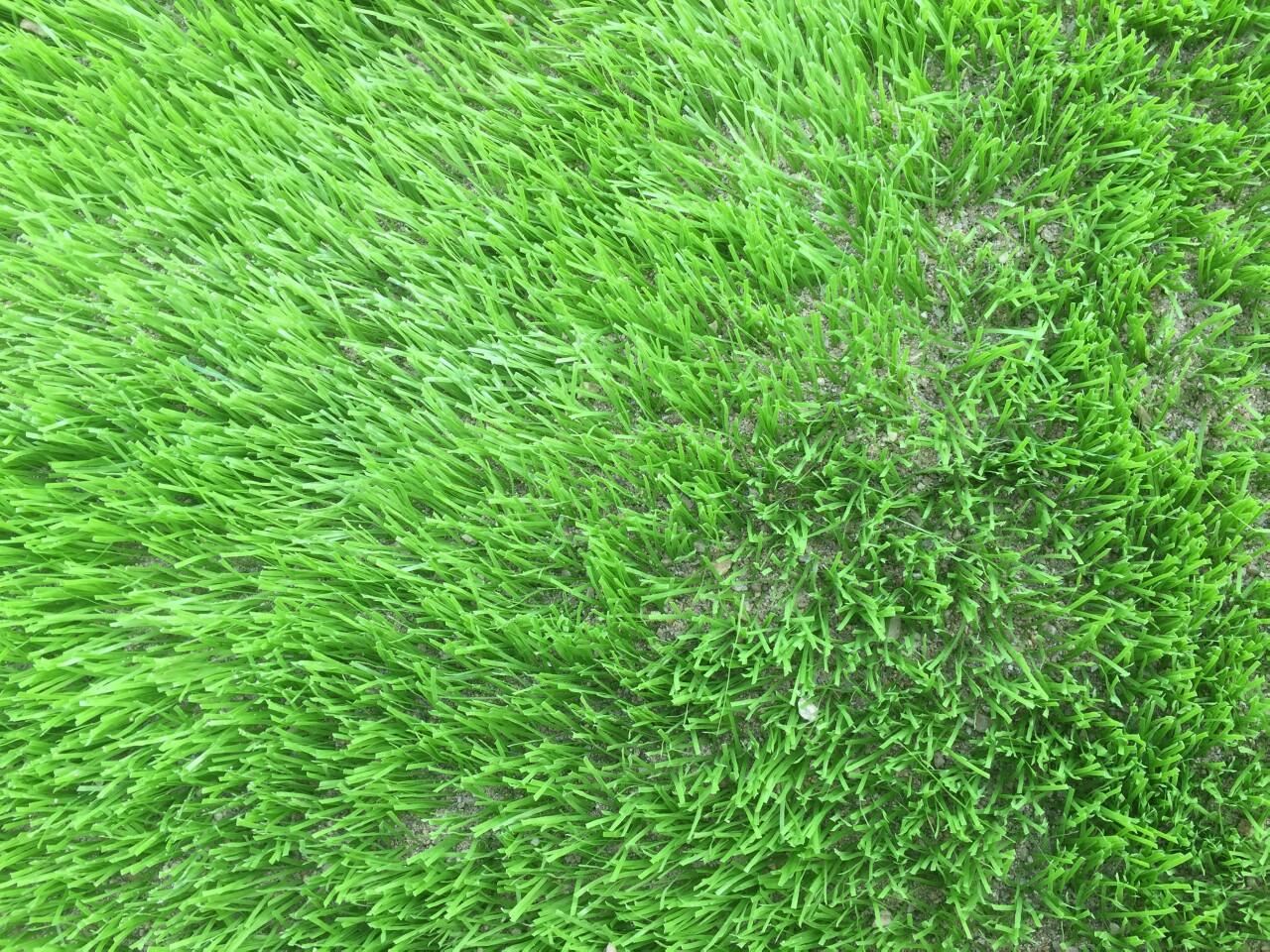Dự án sân bóng đá cỏ nhân tạo tại Lai Châu 4