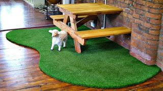 3. Trải thảm cỏ nhân tạo cho sàn nhà 1